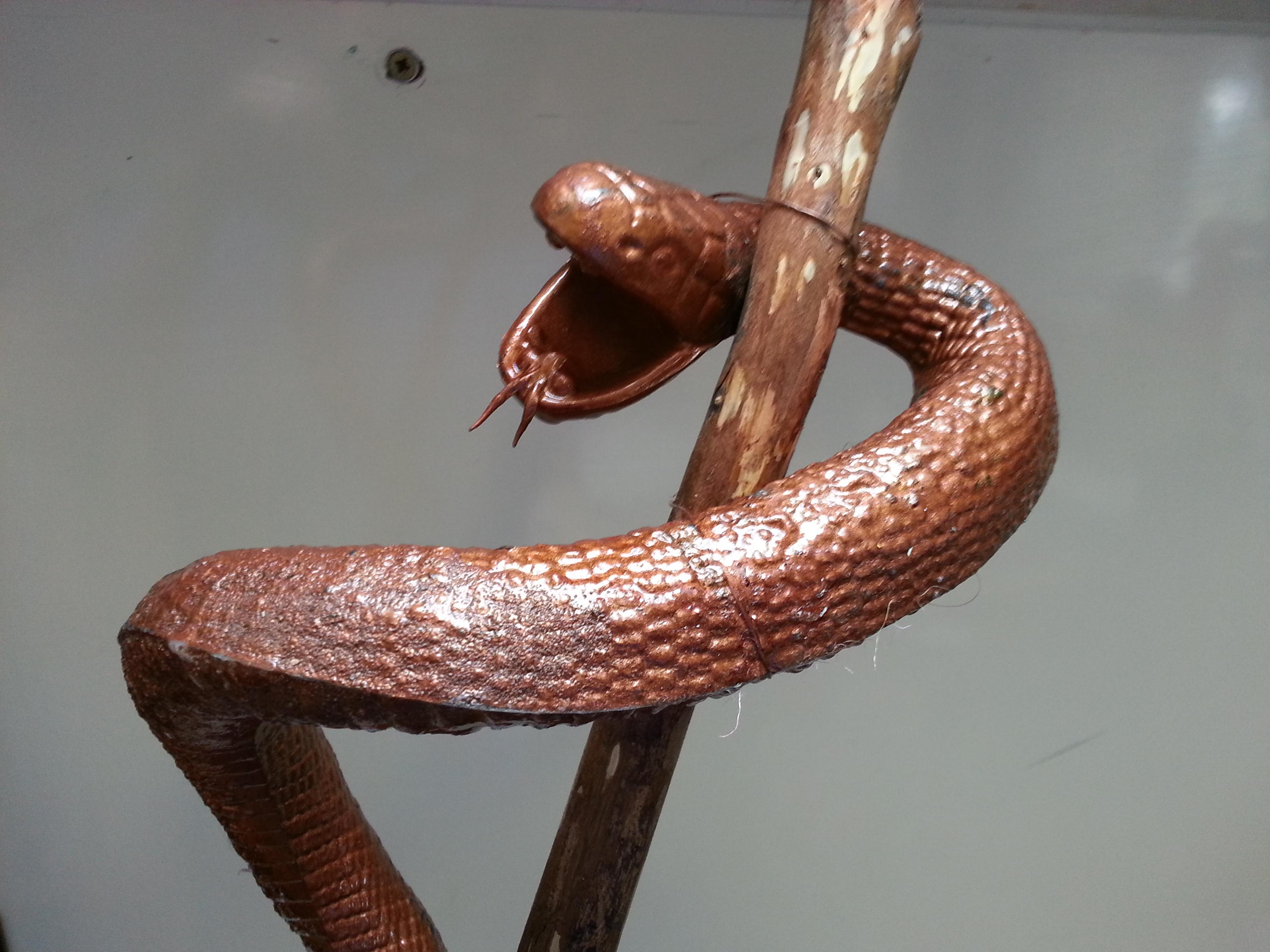 Hope for the Snake Bit