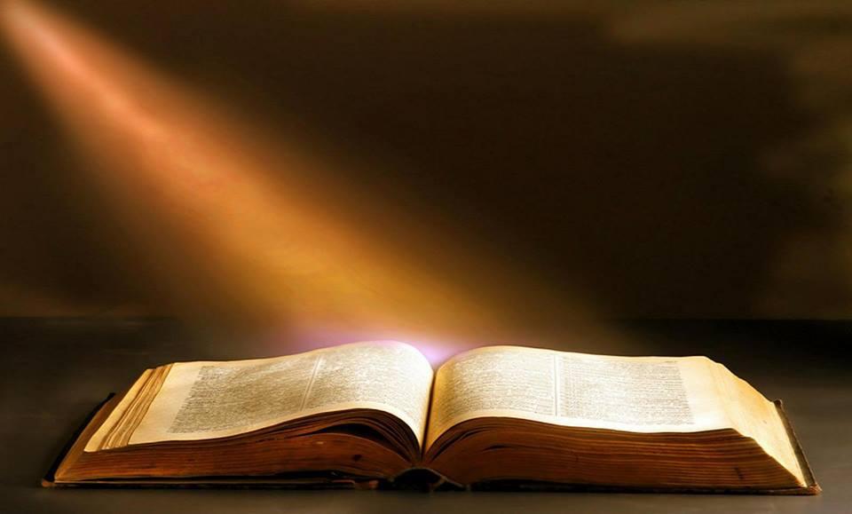Delight In God's Revelation