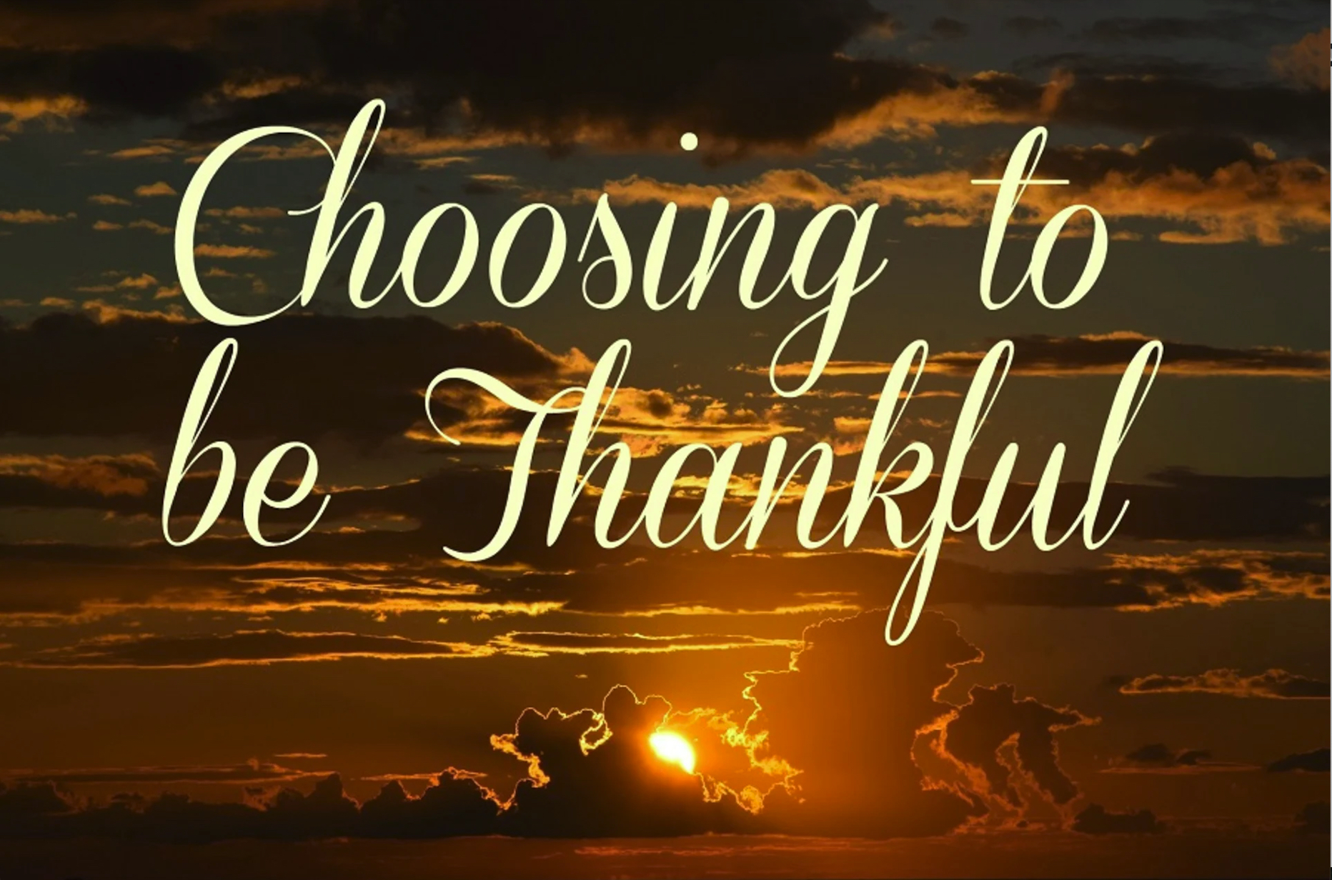 Developing the Habit of Thanksgiving